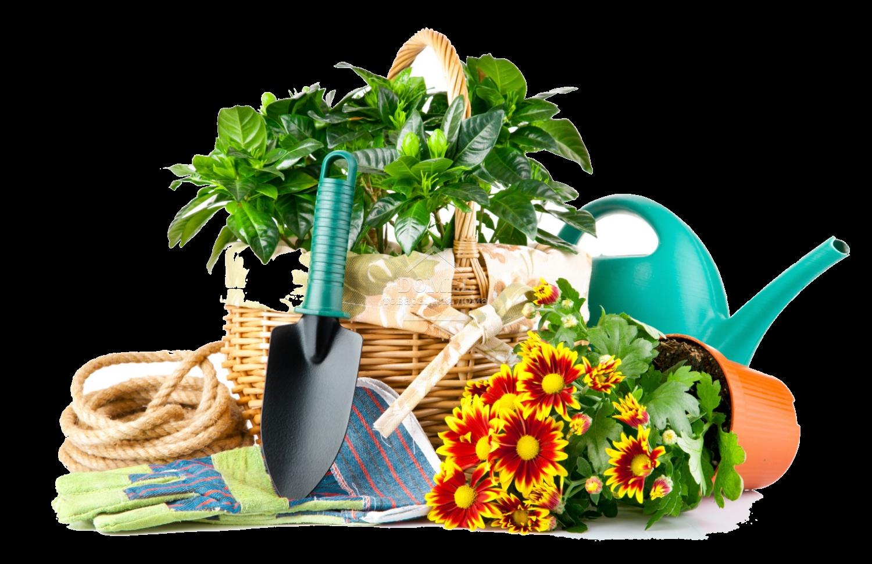 Товари для саду і дачі • купити товари для городу за вигідними цінами в  Україні, доставка в Київ, Харків, Дніпро, Одесу